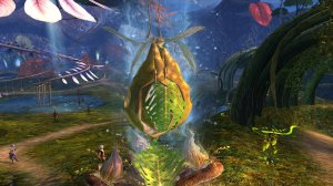 GW2_The_Grove0005
