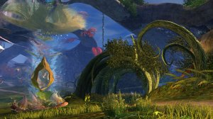 GW2_The_Grove0006
