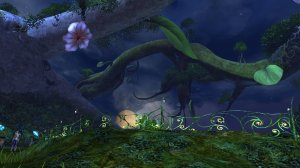 GW2_The_Grove0007