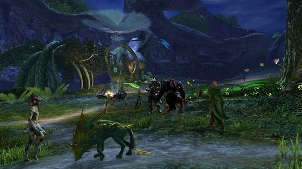GW2_The_Grove0009