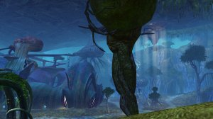 GW2_The_Grove0022