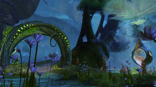 GW2_The_Grove0025