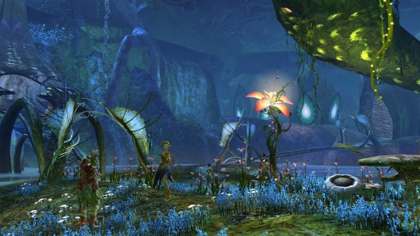 GW2_The_Grove0033