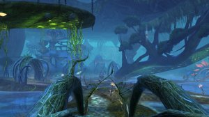 GW2_The_Grove0034