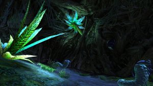 GW2_The_Grove0038