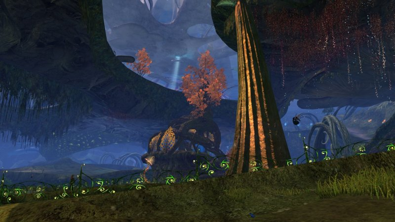 GW2_The_Grove0039