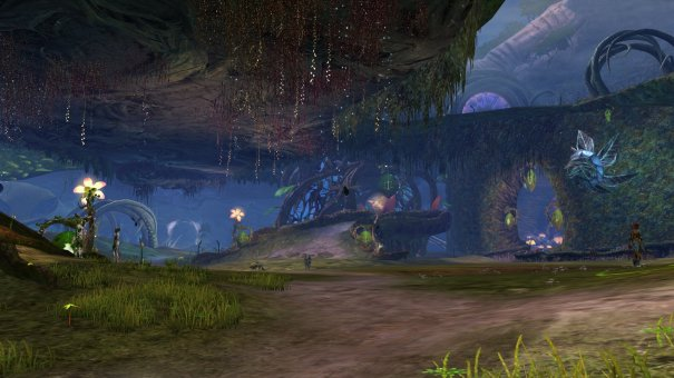 GW2_The_Grove0043