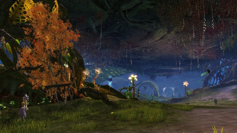 GW2_The_Grove0044