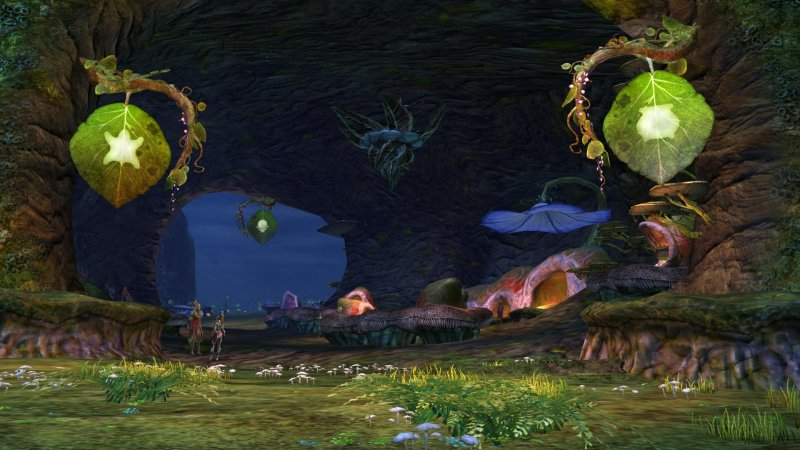 GW2_The_Grove0048