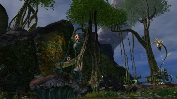 GW2_The_Grove0056