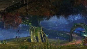 GW2_The_Grove0059