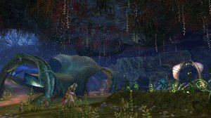 GW2_The_Grove0060