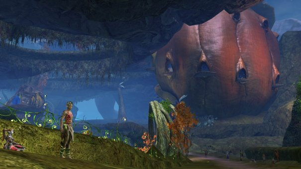 GW2_The_Grove0066