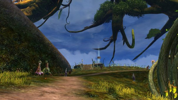 GW2_The_Grove0072