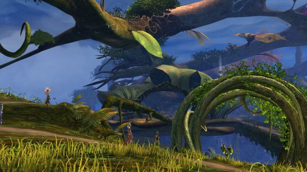 GW2_The_Grove0077