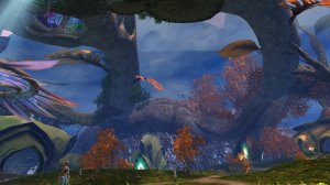 GW2_The_Grove0082