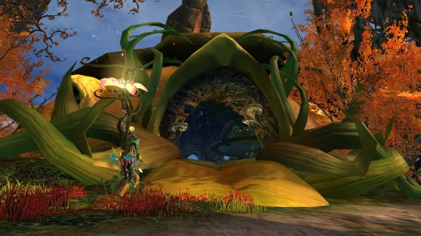 GW2_The_Grove0084