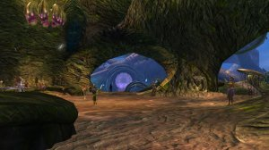 GW2_The_Grove0087