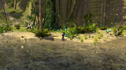 GW2_Screenshots_Launch_005
