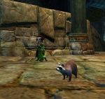 GW2 Hall of Monuments Rockfur Raccoon