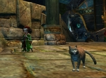 GW2 Hall of Monuments Orange Tabby Cat