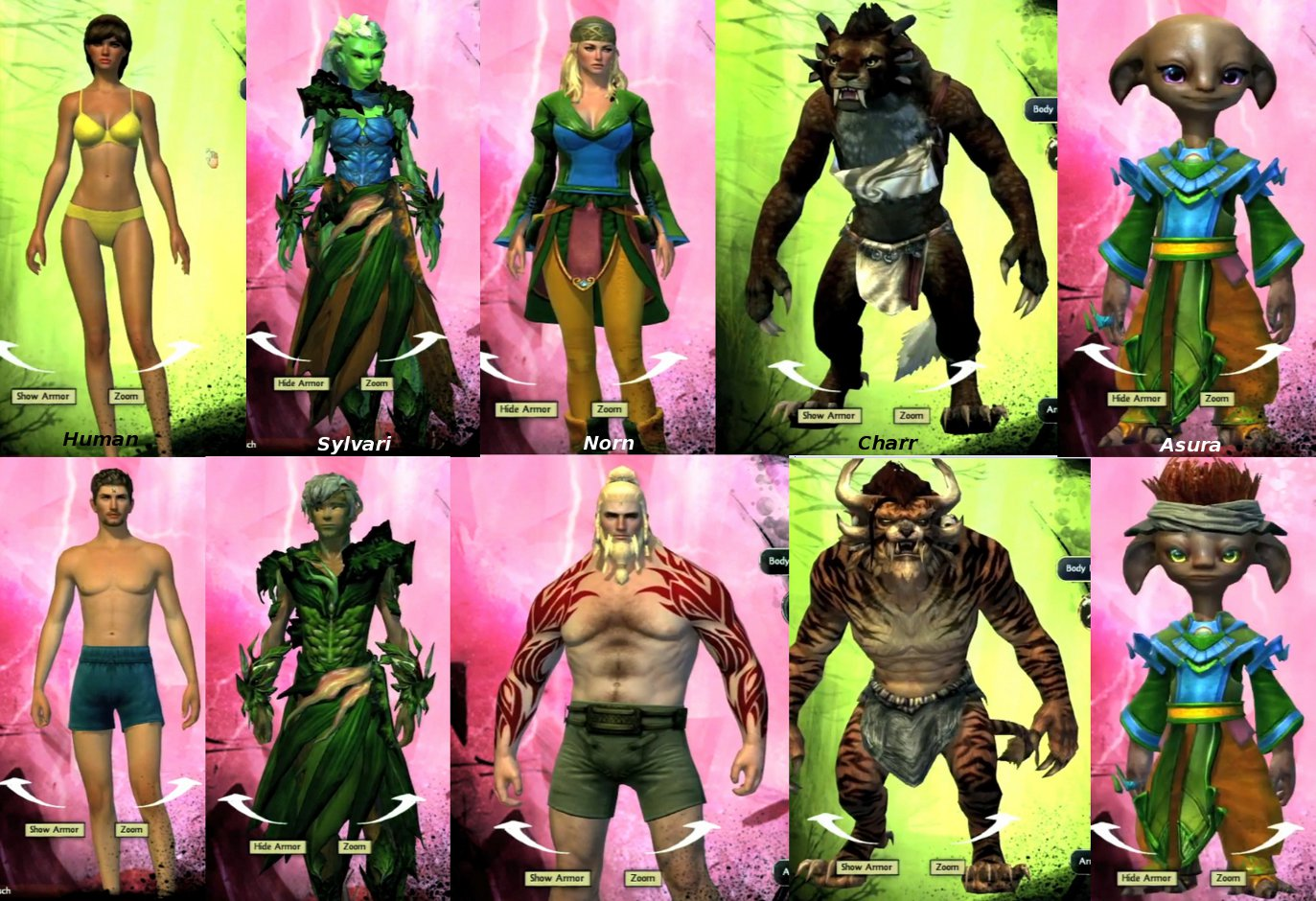 gw2_all_races