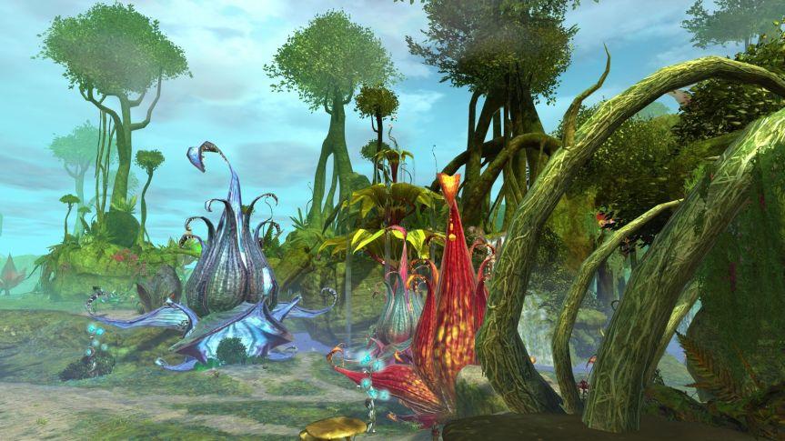 GW2_Caledorn Forest_172