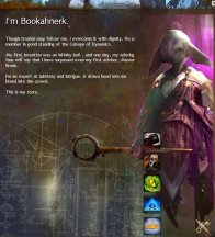 gw2 character choices
