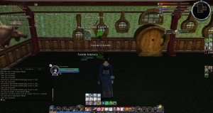 lotro wall and floor slots