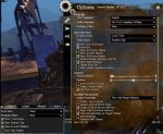 GW2 Map chat settings