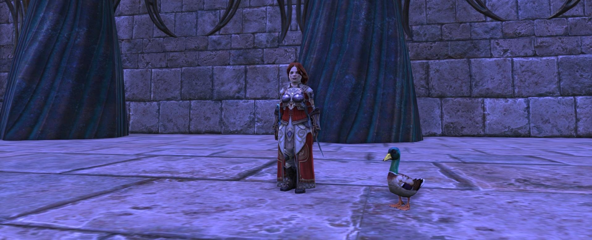 Rift Ducklar Companion