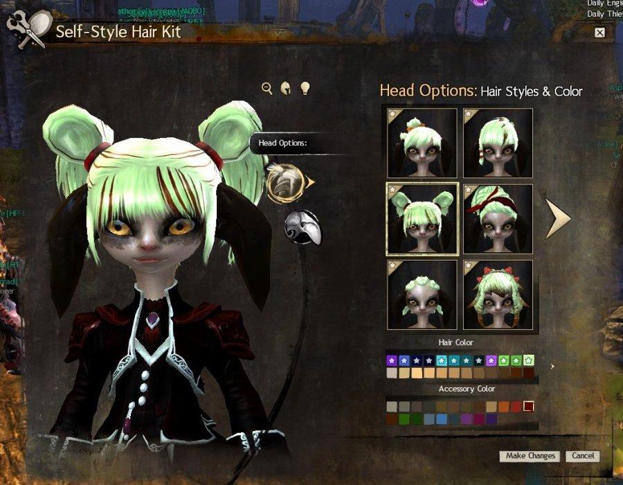 GW2_Self Style Hair Kit