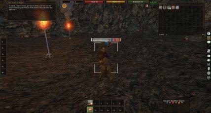 Project Gorgon Combat