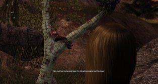 Defiance NPC in tree