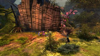 Guild Wars 2 Heart of Maguuma