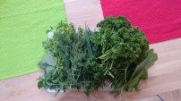 Paeroka's Green Sauce_01