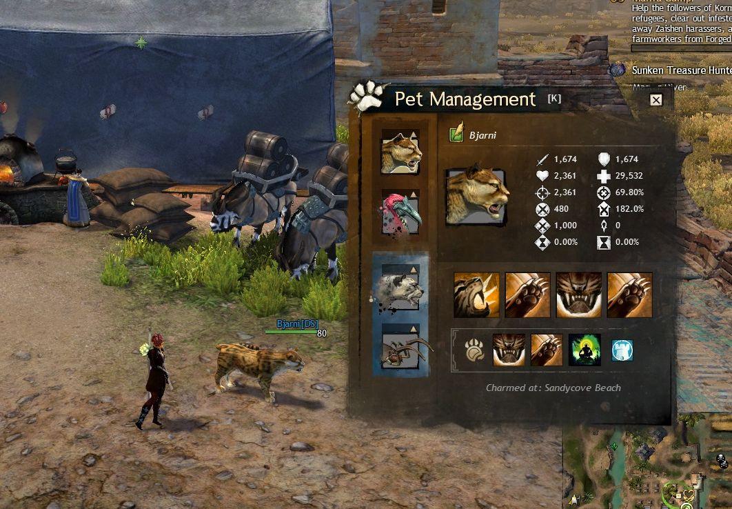 GW2 Pet management