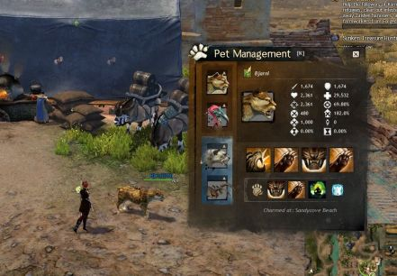 GW2 Pet management