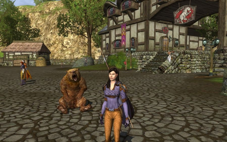 Lotro Lore-Master bear pet