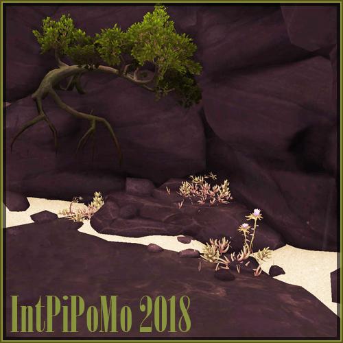 IntPiPoMo2018