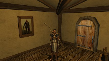 Lotro Beorning character