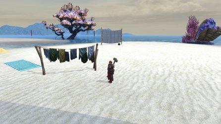 Dwarf cleric in dimension